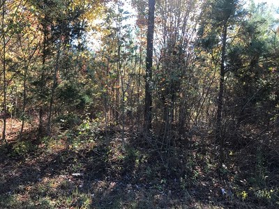 Lawrenceville Residential Lots & Land For Sale: 1 Rte 46 Christianna Hwy