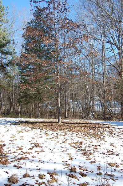 Lawrenceville Residential Lots & Land For Sale: 88 Brooks Crossing