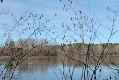 Brunswick County Residential Lots & Land For Sale: 11 Waters Edge Drive