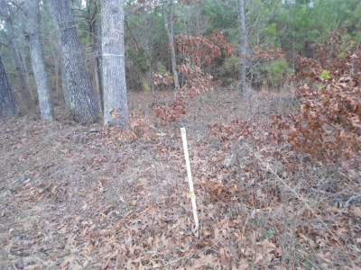 Brunswick County Residential Lots & Land For Sale: 550 Wildcat Ln