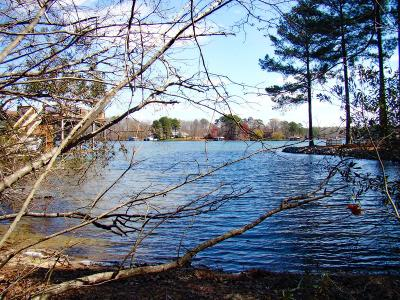 Brunswick County Residential Lots & Land For Sale: 24a/25a Watermans Drive