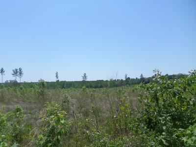 Brunswick County Residential Lots & Land For Sale: Forksville Rd