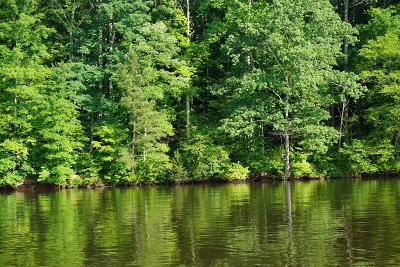 Brunswick County Residential Lots & Land For Sale: 7 Waters Edge Drive