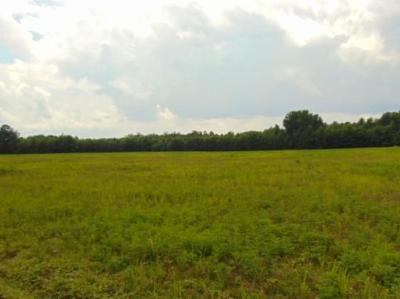 Dinwiddie County Residential Lots & Land For Sale: Fox Branch Rd.