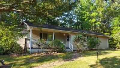 Brunswick County Single Family Home For Sale