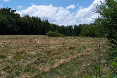 Lawrenceville Residential Lots & Land For Sale: 4 Acres Ogburn Rd