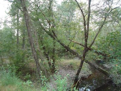 Brunswick County Residential Lots & Land For Sale: Pocahontas Rd