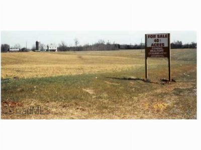 Thomasville NC Residential Lots & Land For Sale: $2,250,000