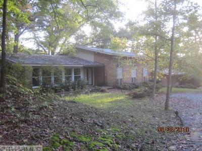 Single Family Home For Sale: 210 Beech Valley Road