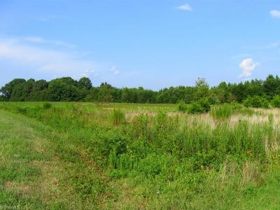 Rockingham County Residential Lots & Land For Sale: 119 +/- Acres Gideon Grove Church Road
