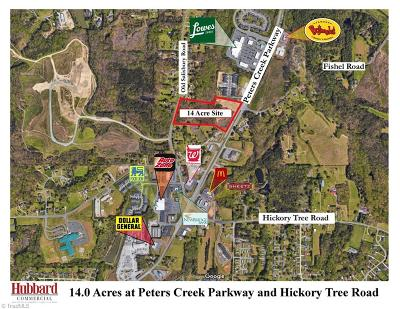 Winston Salem NC Commercial Lots & Land For Sale: $3,500,000