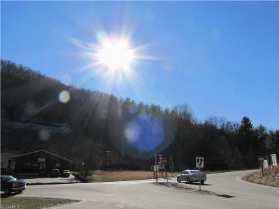 Ashe County Residential Lots & Land For Sale: Tbd Hwy 88 W