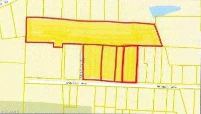 Guilford County Commercial Lots & Land For Sale: 4724 Mitchell Avenue