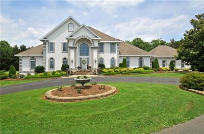 Mount Airy NC Single Family Home For Sale: $925,000