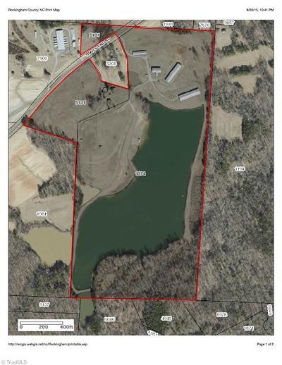 Reidsville Commercial For Sale: 271 Trails End Road