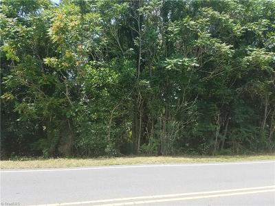 Belews Creek Residential Lots & Land For Sale: 5393 Reidsville Road