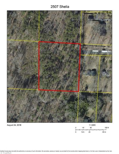 Greensboro Residential Lots & Land For Sale: 2507 Shelia Drive