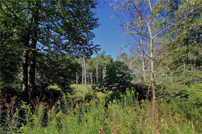 Watauga County Residential Lots & Land For Sale: 5 Cone Road