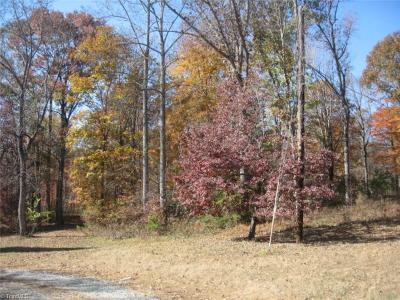 Rockingham County Residential Lots & Land For Sale: Lot 1 Penny Lane