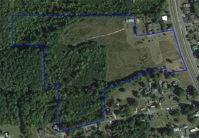 Rockingham County Commercial Lots & Land For Sale: 176181 Glenn Street