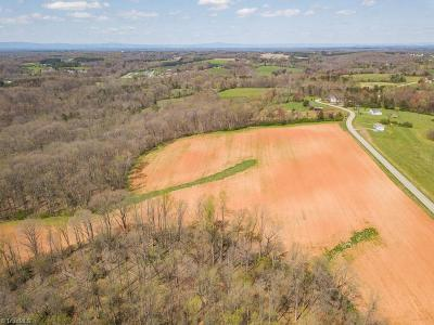 Yadkin County Residential Lots & Land For Sale: 3 McKnight Road