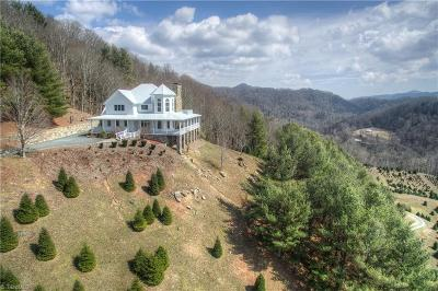 Sugar Mountain NC Single Family Home For Sale: $3,900,000