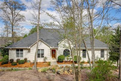 Davidson County Single Family Home For Sale: 1424 Healing Springs Drive