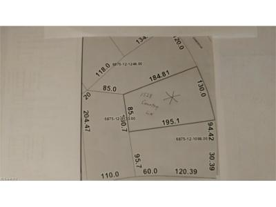 Kernersville Residential Lots & Land For Sale: 1528 Country Lane