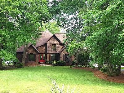 Mocksville Single Family Home For Sale: 256 Lakeview Road
