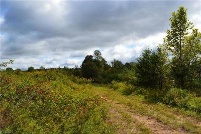 Rockingham County Residential Lots & Land For Sale: 00 Case School Road