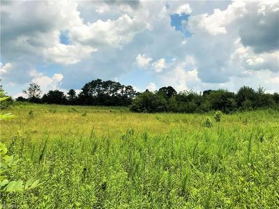 Rockingham County Residential Lots & Land For Sale: 209 Pearman Road