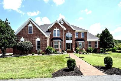 Mebane NC Single Family Home For Sale: $1,250,000