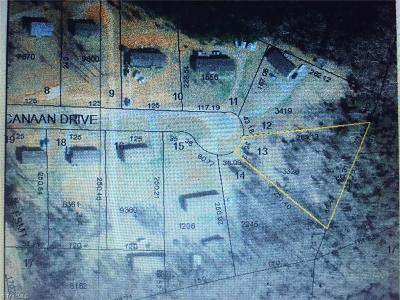 Davidson County Residential Lots & Land For Sale: 246 Canaan Drive