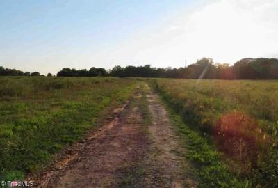 High Point, Kernersville, Winston Salem, Browns Summit, Burlington, Greensboro, Jamestown, Oak Ridge, Summerfield Residential Lots & Land For Sale: 2124 Beeson Road