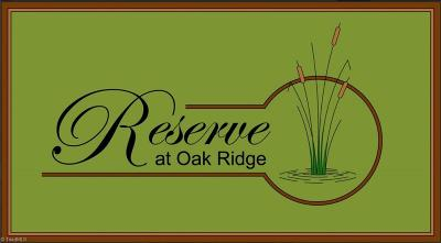 Kernersville Single Family Home For Sale: 9002 Quiet Reserve Road
