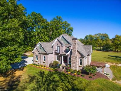 Alamance County Single Family Home For Sale: 3829 Danieley Water Wheel Road