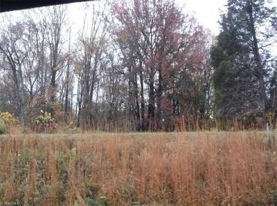 Rockingham County Residential Lots & Land For Sale: 00 Nc Highway 87