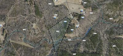 Residential Lots & Land For Sale: 1020 Guerrant Springs Road