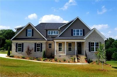 Guilford County Single Family Home For Sale: 499 Wigeon Point