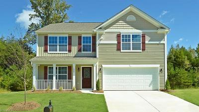 Guilford County Single Family Home For Sale: 1095 Kerr Street