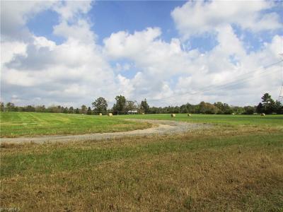 Pleasant Garden Residential Lots & Land For Sale: 1184-1238 Kearns Hackett Road