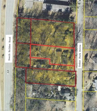 Guilford County Commercial Lots & Land For Sale: S Holden Road