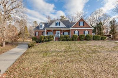 Lexington Single Family Home For Sale: 306 Spring Lake Court