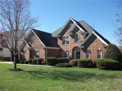 Clemmons Single Family Home For Sale: 6987 Prairie Grove Drive