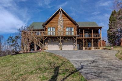 Winston Salem Single Family Home For Sale: 1239 Petree Road
