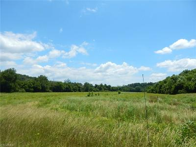 Yadkin County Residential Lots & Land For Sale: Tbd Us Highway 601 N
