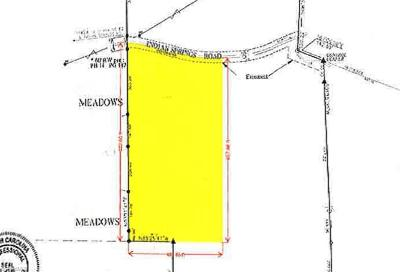 Caswell County Residential Lots & Land For Sale: 410 Indian Springs Road