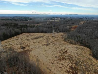 Surry County Residential Lots & Land For Sale: 129 Ac Hickman Hollow Trail