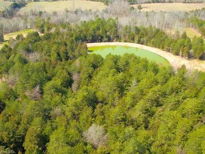 Alamance County Residential Lots & Land For Sale: Lot 2 Allen Jarrett Drive #ALLEN JA