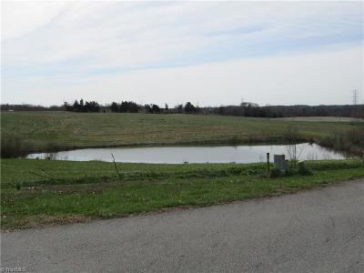 Yadkin County Residential Lots & Land For Sale: 2034 Chimney Field Road